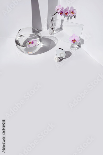 Geometric angular composition with phalaenopsis orchid flowers, different glass objects and shadows on a white background Wall mural