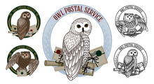 Set Of Cards With An Owl On A Round Frame And Letters On A White Background.