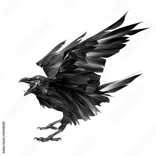 drawn bird crow on a white background with an open beak Wallpaper Mural