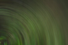 Abstract Blurred Texture Leaf Background.