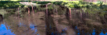 Panorama Of Refections At Dawn...