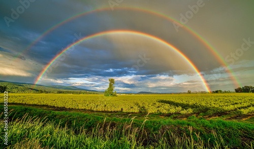 View of green fields with a rainbow that stretches