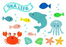 海のかわいい生き物
