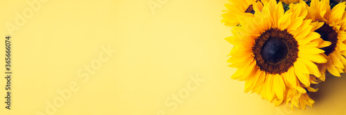 Fotografie, Tablou Yellow Sunflower Bouquet on bright Yellow Background, Autumn Concept, Top View,