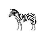 Fototapeta Fototapeta z zebrą - Zebra logo. Isolated zebra on white background