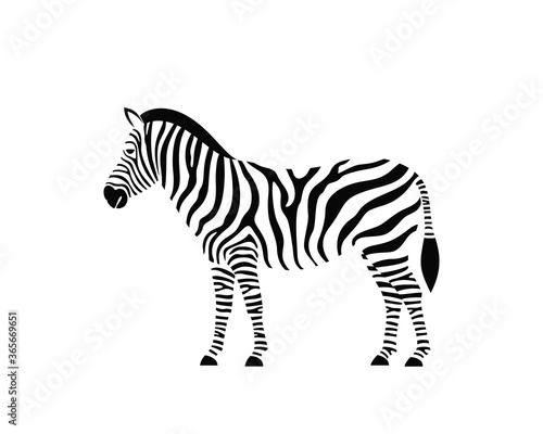 Fototapeta Zebra logo. Isolated zebra on white background obraz