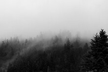 Black And White Photo Of Fog A...