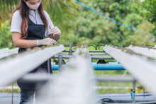 Young Farmers Are Monitoring T...