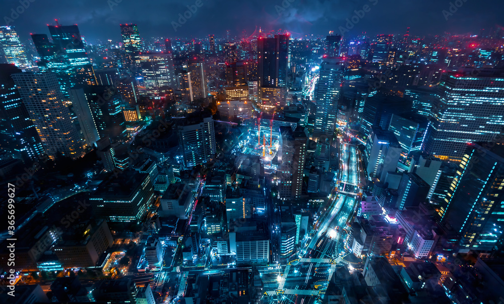 Fototapeta Tokyo, Japan cityscape view from high above