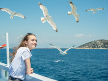 Young Girl Watching The Seagulls