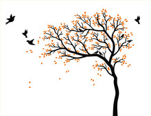 Vector Tree With Red Leaves And Birds