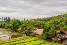 Chiang Mai, Thailand; July 2, ...