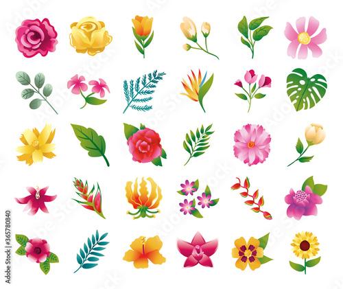 Fototapeta bundle of beautiful flowers and leafs icons obraz