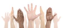 Many Raised Human Hands, Isolated On White Background