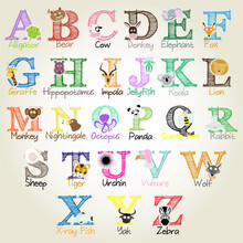 Illustrated Alphabet With Anim...
