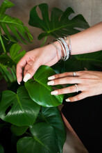 Hands With Nail Polish On Monstera Plant