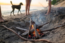 Bonfire On The Beach With Dog In Background