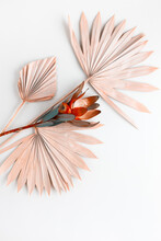 Flower Composition Made Of Dried Palm Leaves And Exotic Protea On Pastel Grey Background. Nature Tropical Concept, Copy Space, Flat Lay.
