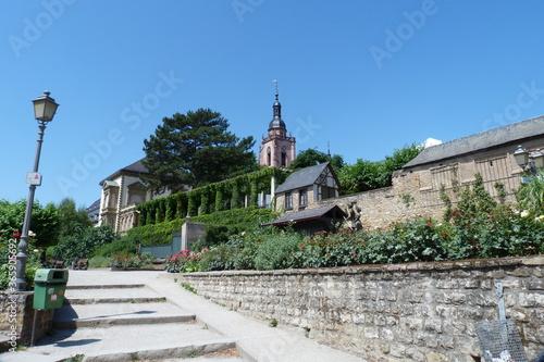 Fototapety, obrazy: Eltville am Rhein Promenade mit Pergola und Hecken und