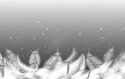 Fotografie, Obraz Realistic falling feathers background