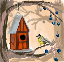 Bird House Poster Nature Cover