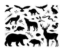 Vector Silhouettes Animals Set. Deer, Hare, Fox, Hedgehog, Squirrel, Wolf, Bear, Snake, Beaver, Raccoon, Mouse, Wild Boar And Birds.