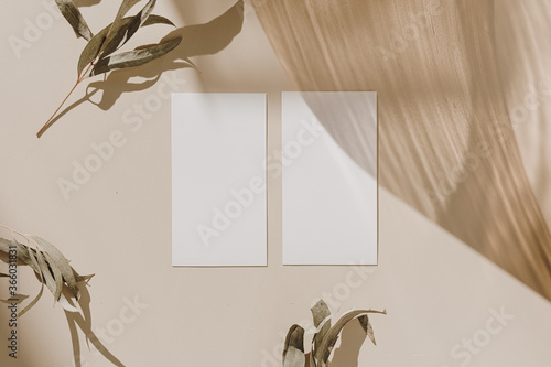 Blank paper sheet cards with mockup copy space, wooden tray and dry leaves with sunlight shadow on beige background. Minimal business brand template. Flat lay, top view