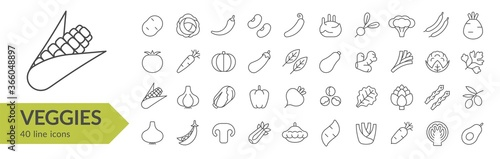 Veggies line icon set Fototapet