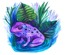 Magic Violet Frog Vintage Cute...