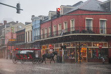 A Horse Dashes Along The Street Trying To Escape A Sudden Downpour During A Storm In New Orleans
