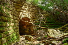 Forgotten Tunnel In The Woods