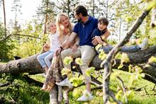Family Sitting On Fallen Tree ...