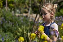 Girl In Allotment Garden Wearing Daisy Wreath Blowing A Blowball