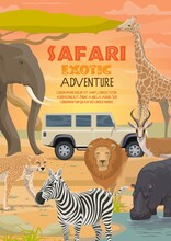 African Safari, Vector Hunting...