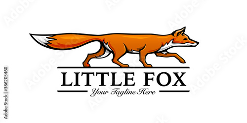 Fotomural Little fox logo template design. Vector illustration.