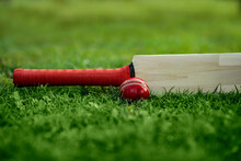 Leather Cricket Ball Resting O...