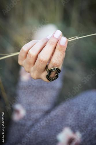 Fototapeta spikelet in a woman hand