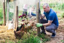 Positive Farmer Builds Chicken Coop Fence On Farm