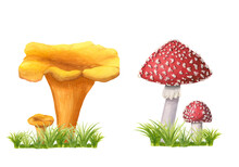 Set Of Watercolor Chanterelles And Redcap Fly Agarics With Grass Isolated On White. Wild Forest Mushrooms Composition On Green Herbs. Image Of Edible Golden Cantharellus And Poisonous Amanita Muscaria