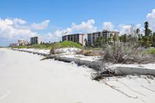 Beach Erosion At The Surf's Ed...