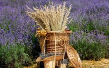 Spikelets Of Wheat In A Wicker...