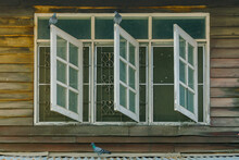 Pigeons On Old Wooden Window O...