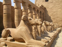 LUXOR TEMPLE IN EGYPT. SPHINX AND COLUMNS.