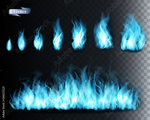 Collection of blue transparent fire  flames. Vector illustration. Canvas Print