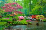 Fototapeta Kawa jest smaczna - Small bridge in Japanese garden in rain, Park Clingendael, The Hague, Netherlands