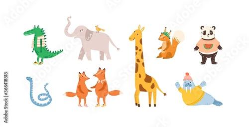 Obraz Set of childish cute animal characters. Design, decoration, decorative element. Funny panda, walrus, crocodile, elephant, fox, squirrel, giraffe. Flat vector cartoon illustration isolated on white - fototapety do salonu