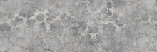 Gray Cement Wall With Floral P...