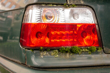 Old Car Taillights And Moss