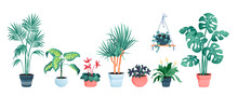 House Plants Home Decor Vector Illustration Set. Cartoon Potted Green Plants Flowers Collection, Houseplants In Clay Pot, Hanging Decorative Flowerpots Isolated On White