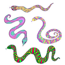 Collection Of Decorative Colorful Ethnic Snakes, Isolated On White Background.